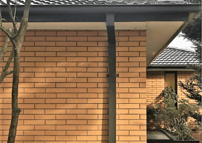 Dark gutter and downpipe