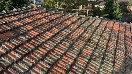 terracotta tile roof restoration before when it was mouldy